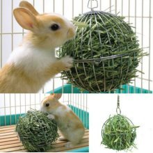 Feed Dispense Ball Hamster Rabbit Guinea Pig Sphere Pet Toy