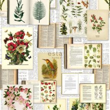 non-woven wallpaper XXL Pages from botanical flowers and plants book Light cream beige, green, brown and ochre yellow