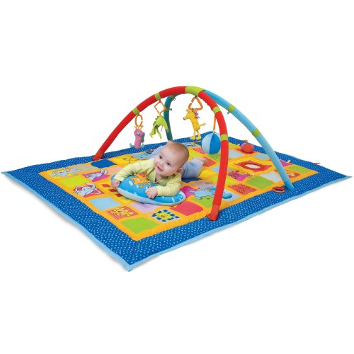 Taf Toys Curiosity Gym