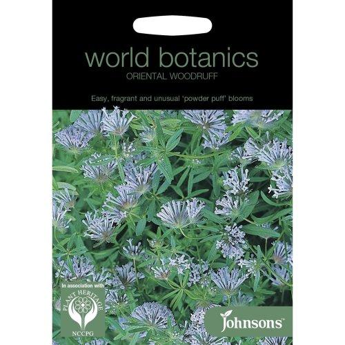 Johnsons World Botanic Flowers - Oriental Woodruff - 200 Seeds
