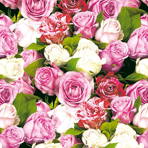 Ambiente 3 Ply Paper Napkins, Roses all Over