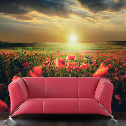Wallpaper - Morning on the poppy meadow