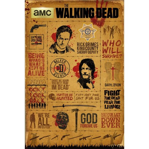 The Walking Dead Infographic Maxi Poster