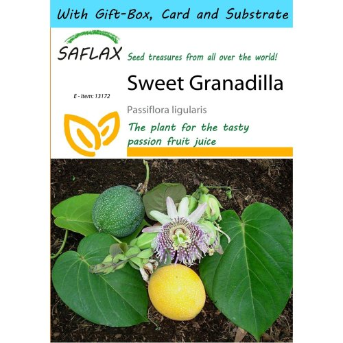Saflax Gift Set - Sweet Granadilla - Passiflora Ligularis - 20 Seeds - with Gift Box, Card, Label and Potting Substrate