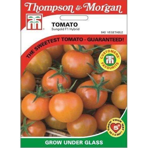 Thompson & Morgan - Vegetables - Tomato Sungold F1 Hybrid - 10 Seed