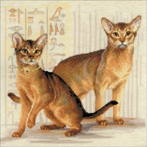 Riolis R1671 15.75 x 15.7 in. Abyssinian Cats Counted Cross Stitch