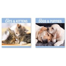 2019 Cats Kittens Dogs Puppies Puppy Cute Square Wall Calendar Christmas Gift