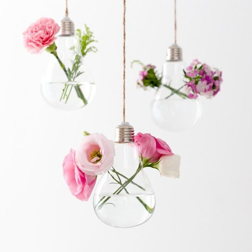 Mkouo 3 Pack Light Bulb Hanging Planter Terrarium Glass Vase for Succulent Air Plant on OnBuy & Mkouo 3 Pack Light Bulb Hanging Planter Terrarium Glass Vase for ...