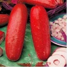 100Pcs Red Cucumber Seeds Fruit Vegetables Seeds Rare Plant Bonsai Home Garden