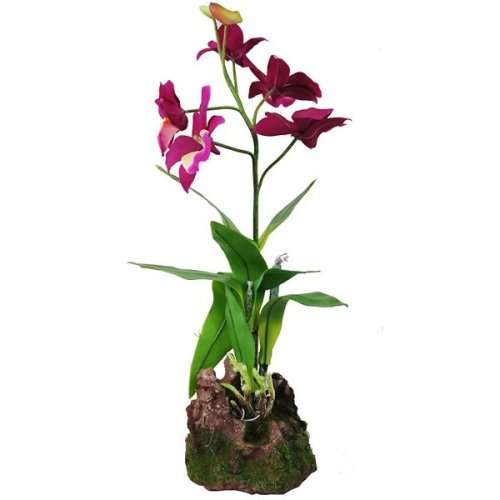 Lucky Reptile Upright Orchid – Purple 35cm