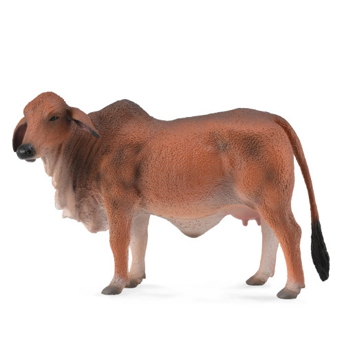 CollectA Red Brahman Cow