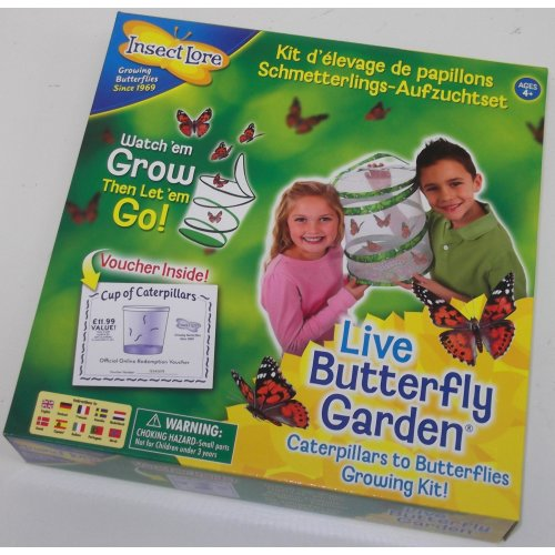 Live Butterfly Garden - Butterfly Breeding Kit