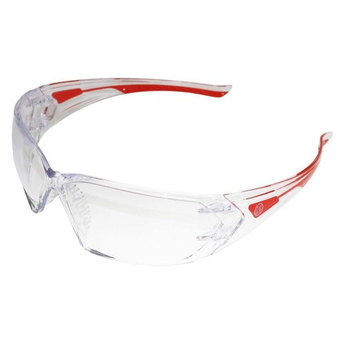 Langley Branded Safety Glasses - Grinding Goggles