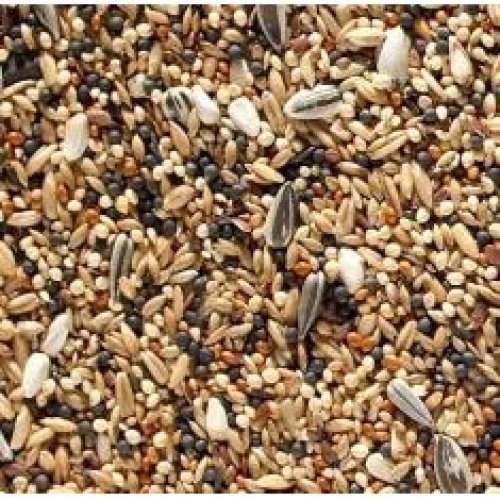 J&j Canary Favourite Mixed Seed 20kg