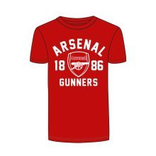 Arsenal Gunners Mens T-shirt - S -  arsenal gunners mens tshirt official football small club clothing sporting licensed product gift new