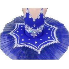 Pretty Dance Dress Children's Ballet Skirt Tutu Princess Dress Costumes Dancewear, C