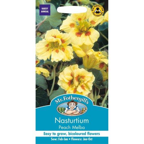 Mr Fothergills - Pictorial Packet - Flower - Nasturtium Peach Melba - 25 Seeds