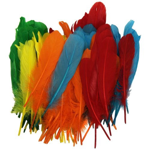 Playbox 15cm Indian Feathers in 5 Colours (120 Pieces)