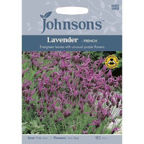 Johnsons Seeds - Pictorial Pack - Flower - Lavender - French - 35 Seeds